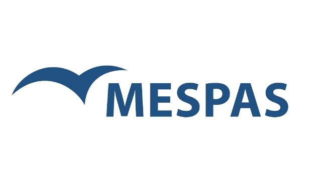 rekrutacja IT - logo mespas