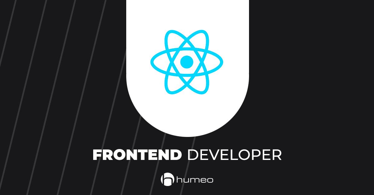 Frontend Developer DrEryk oferty pracy IT - Humeo
